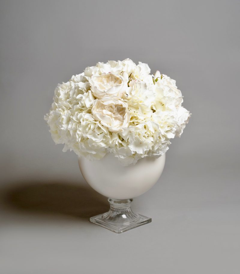 White hydrangeas in vase