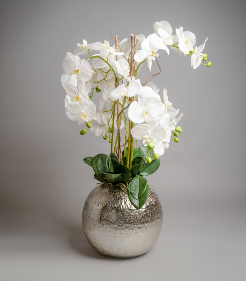 White orchids in silver bowl