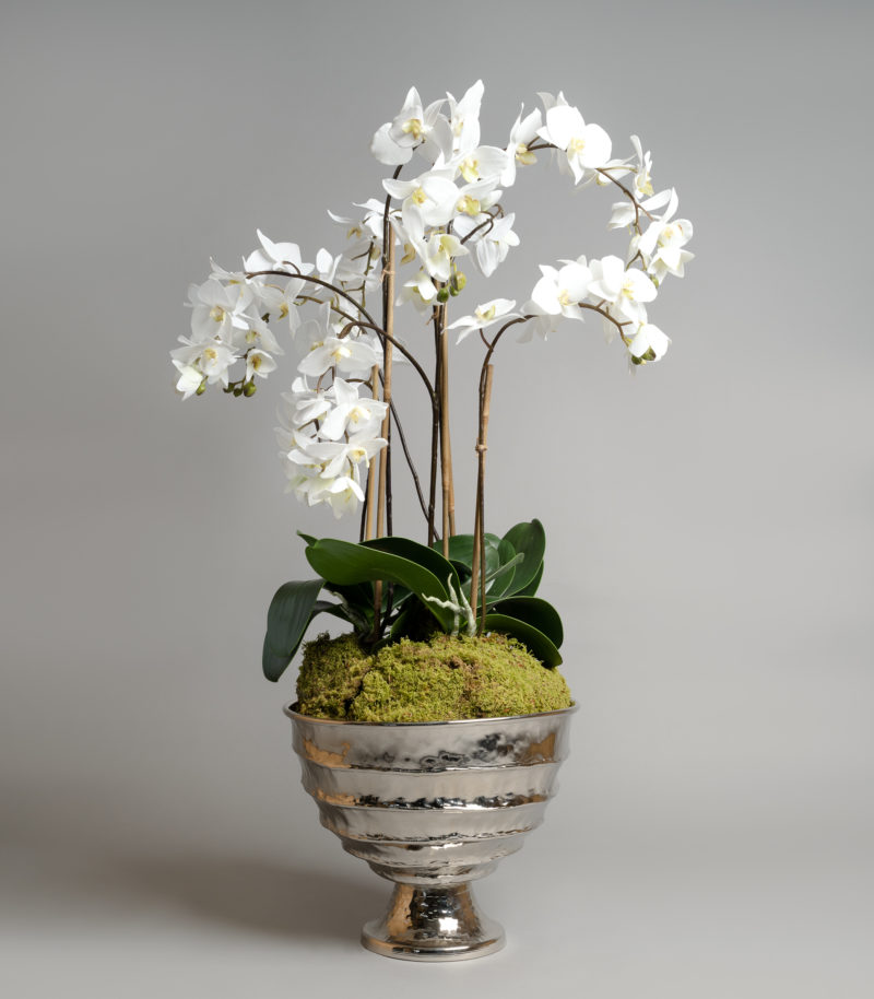 Artificial orchids in silver planter