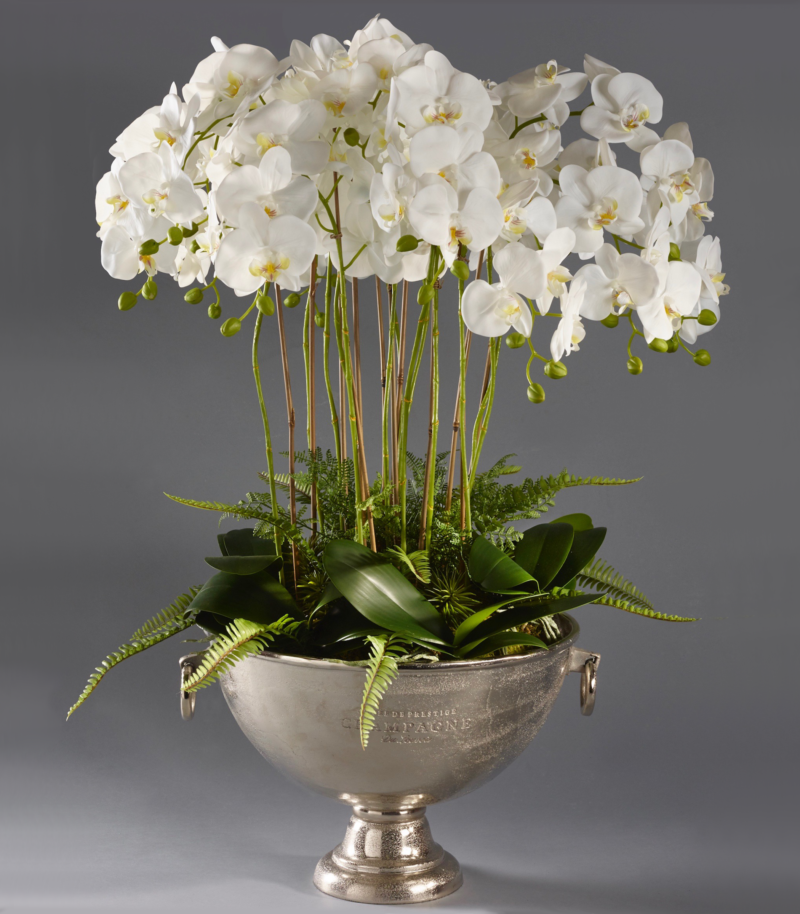 White orchids in large champagne cooler