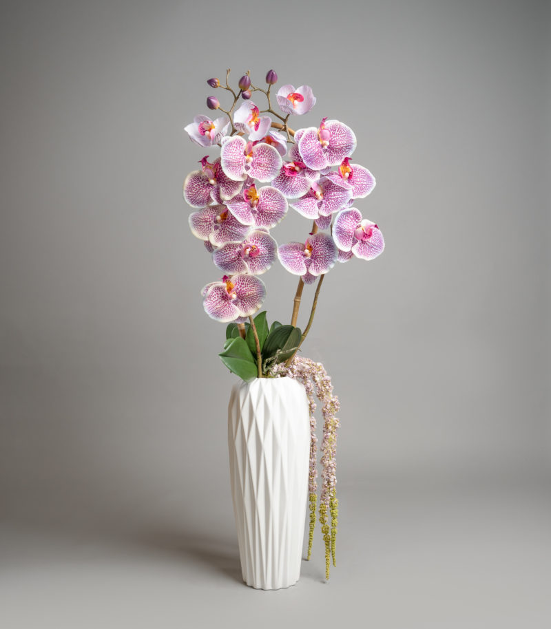 Pink orchids in white vase