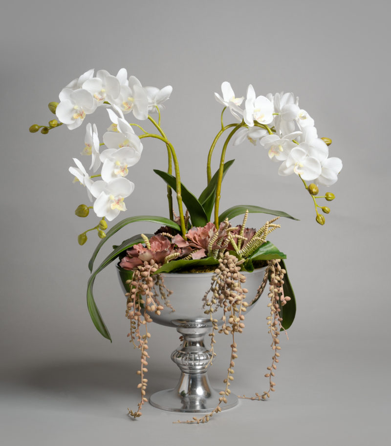 White orchids in a silver urn