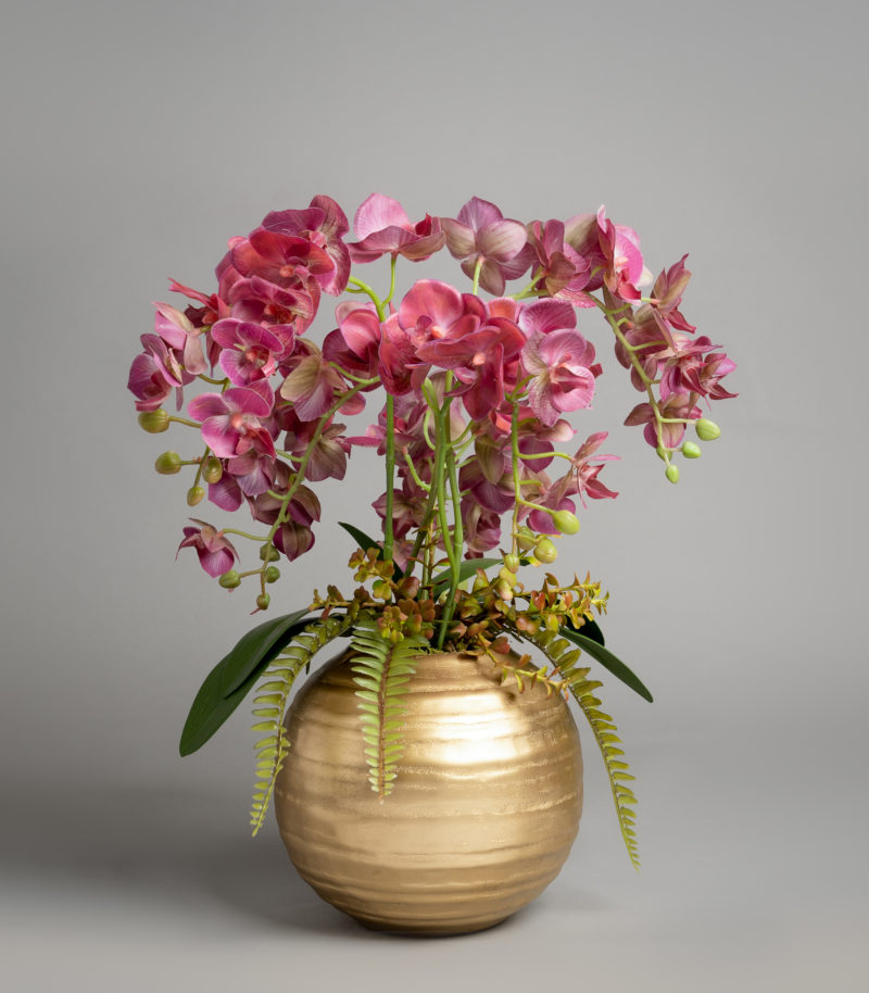 Pink orchid in a gold vase