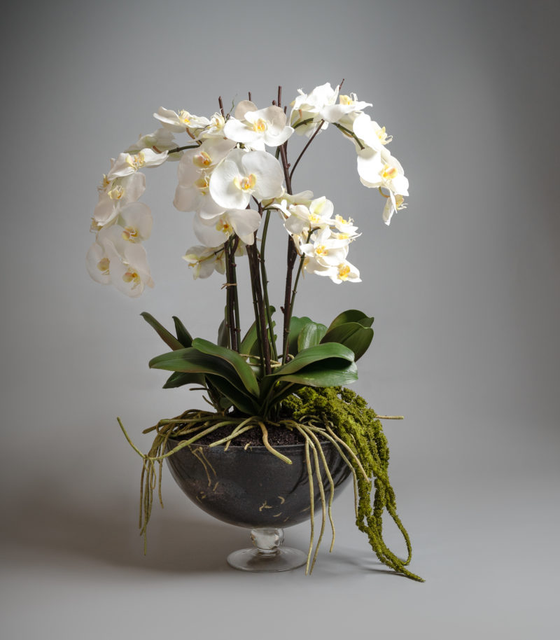 white orchids in large glass vase