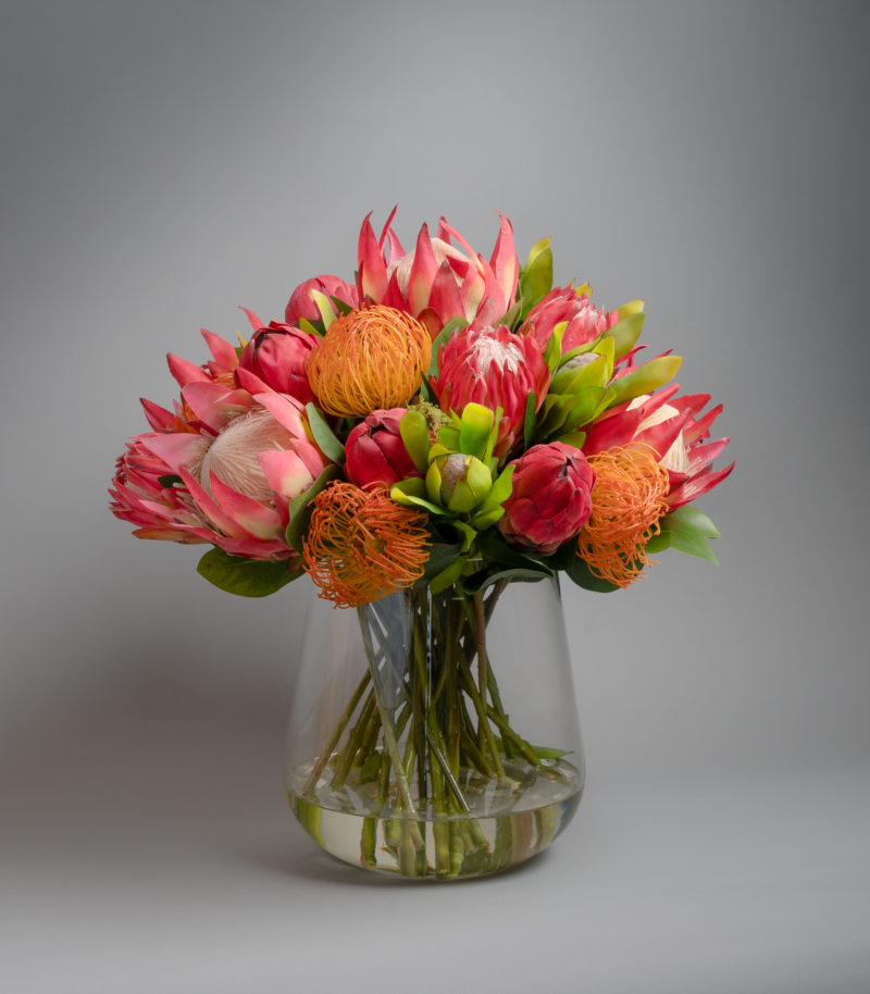 Artificial Protea in glass vase