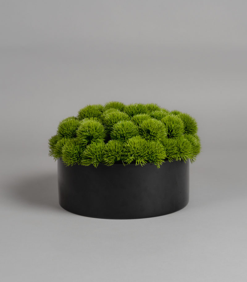 Green balls in black vase