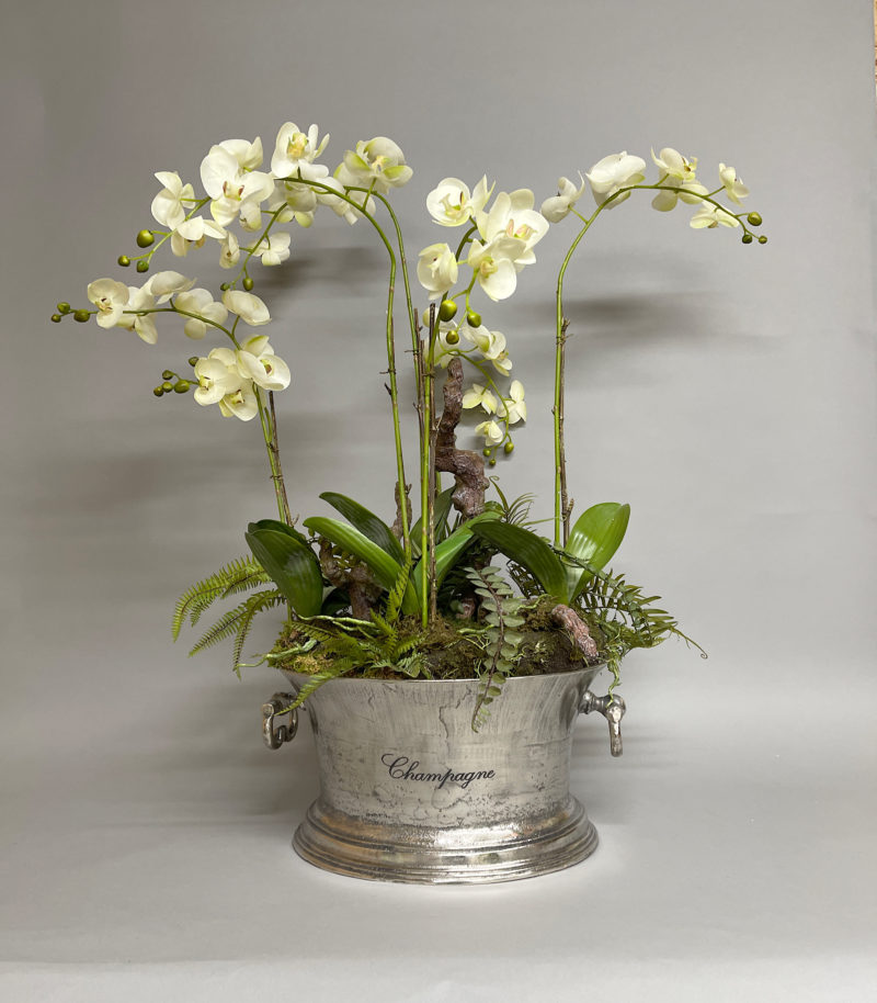 Orchids in a champagne cooler