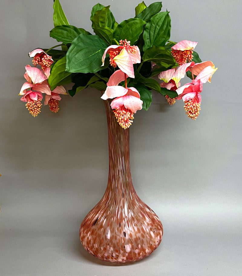 Midinella in a tall pink vase