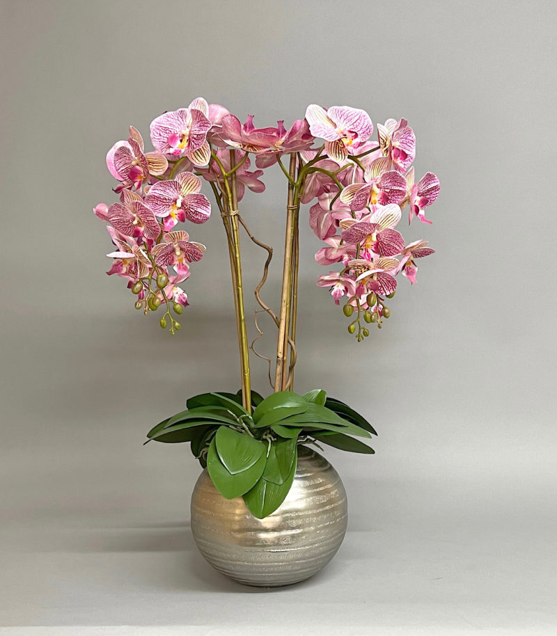 Pink orchids in a silver vase
