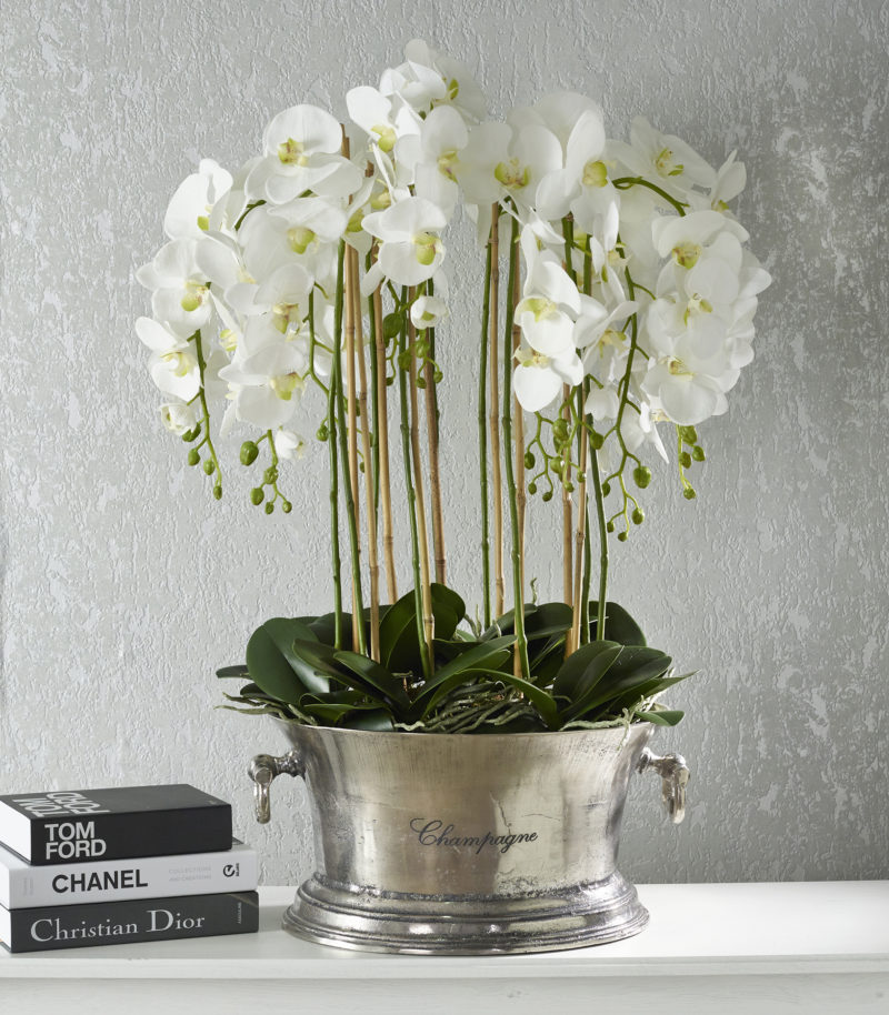 Orchids in champagne bucket